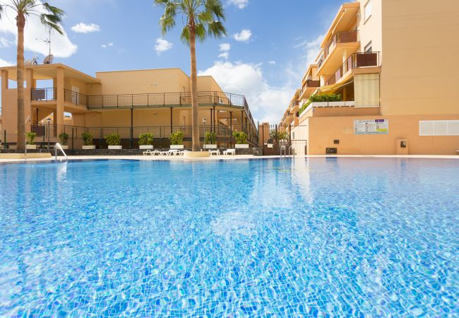 Apartamento en Adeje - Adeje with pool, sea view and WIFI gratis
