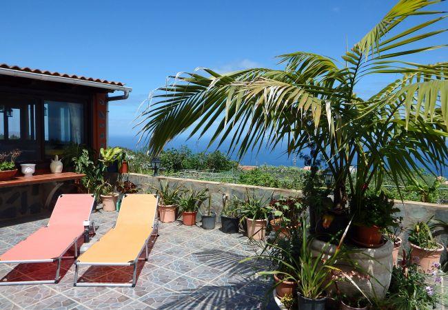 Country house in Icod de los Vinos - Finca La Villa
