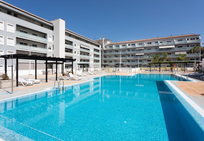 Apartment in Bajamar - Armonia Park with pool and sea view